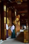 寒川神社 本殿 初詣.jpg