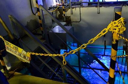 アクアミュージアムバックヤードツアー 群れと輝きの大水槽 シーパラ.jpg