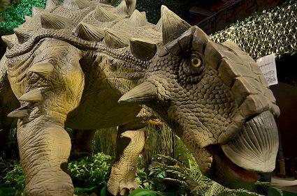アンキロサウルス 連結したトカゲ 太古レストランDINOSAUR.jpg
