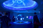 クラゲファンタジーホール 海月の空 新江ノ島水族館.jpg