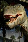 ティラノサウルス 太古レストランDINOSAUR 大和市.jpg